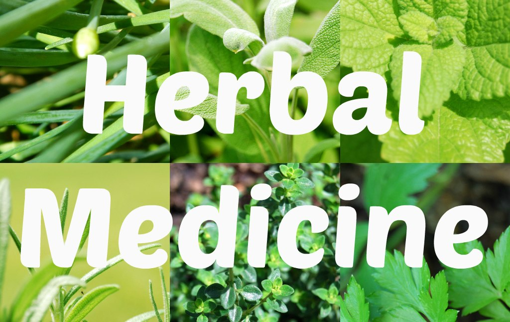 what is herbal medicine called
